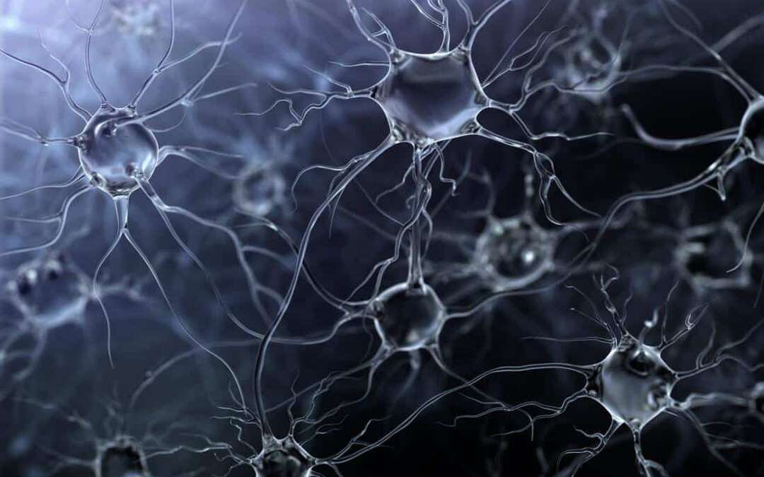 Dementia: Study helps to unravel the cause of brain cell death