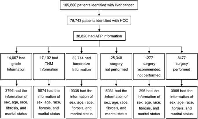 The prognostic correlation of AFP level at diagnosis with pathological grade, progression, and survival of patients with hepatocellular carcinoma