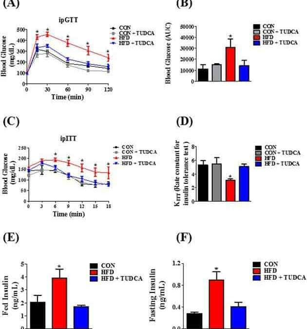 Bile acid TUDCA improves insulin clearance by increasing the expression of insulin-degrading enzyme in the liver of obese mice
