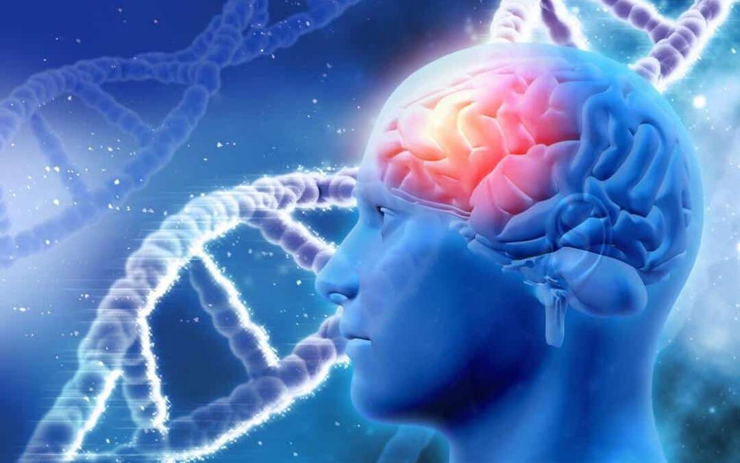 Alzheimer's: Targeting ApoE gene may 'stop the disease'