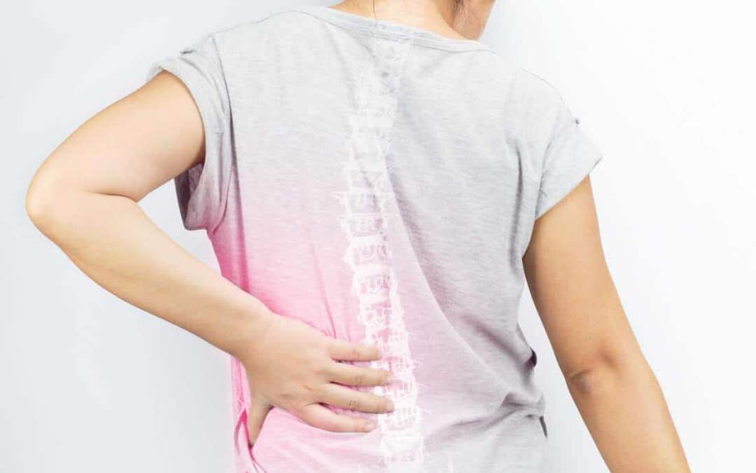 Osteoporosis: Biology behind age-related bone loss revealed